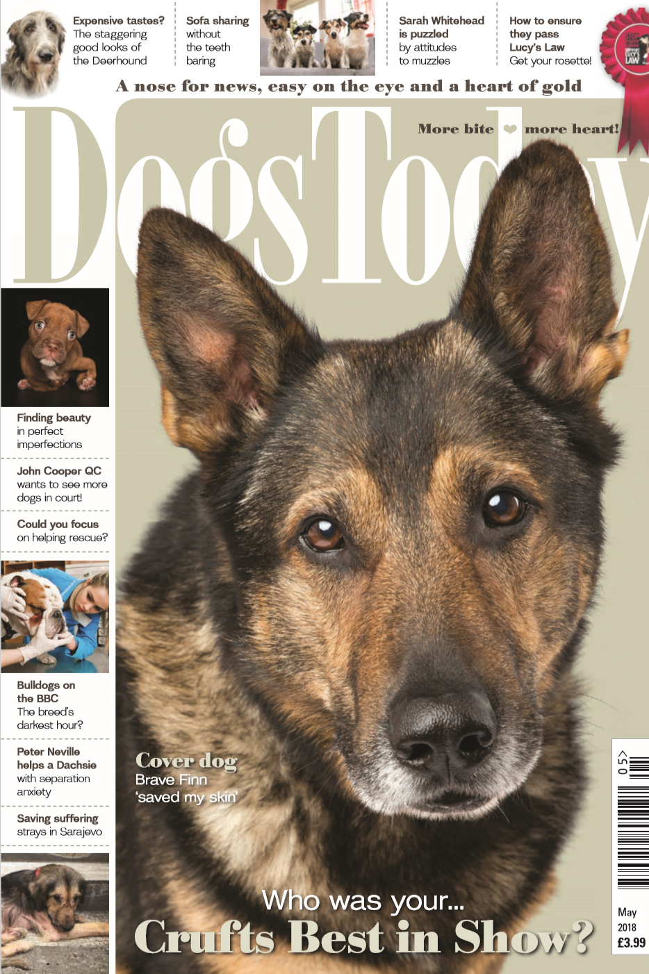 dog muzzle training