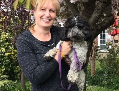 Separation Anxiety – trainers have separation anxiety dogs too: podcast
